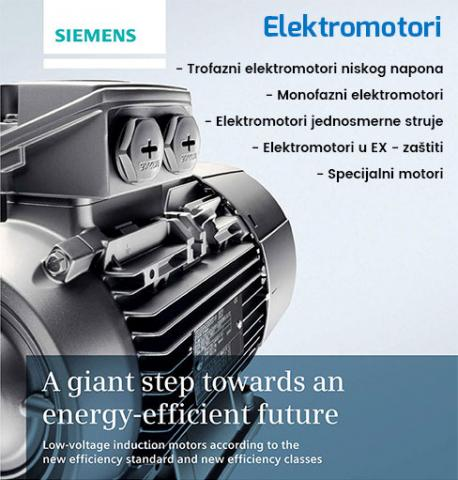 Elektromotori front